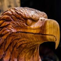 July 13 - SquarePerspectives  -  Carved Eagle