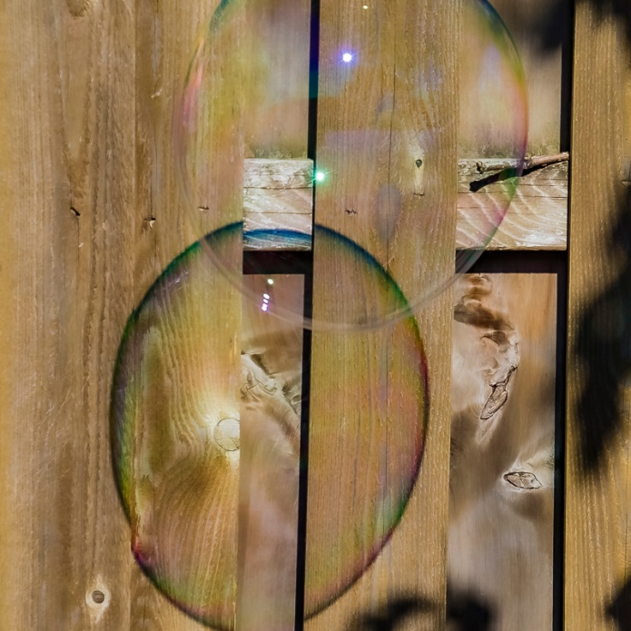 giant bubbles, reflection, wood, Cee Neuner, ceenphotography.com