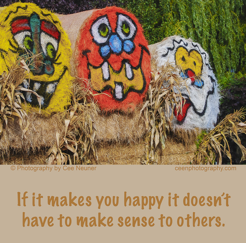 if it makes you happy it doesn't have to make sense to others, ceenphotography.com, pick me up, inspire, uplift, motivate, photography, Cee Neuner, happy face. haystack, autumn,