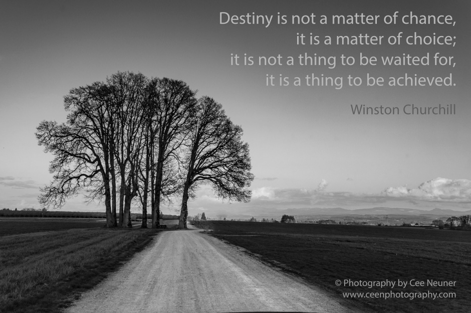 Destiny is not a matter of chance, it is a matter of choice; it is not a thing to be waited for, it is a thing to be achieved, Winston Churchill, pick me up, inspire, uplift, motivate, photography, Cee Neuner, ceenphotography.com, road, black and white, tree, landscape