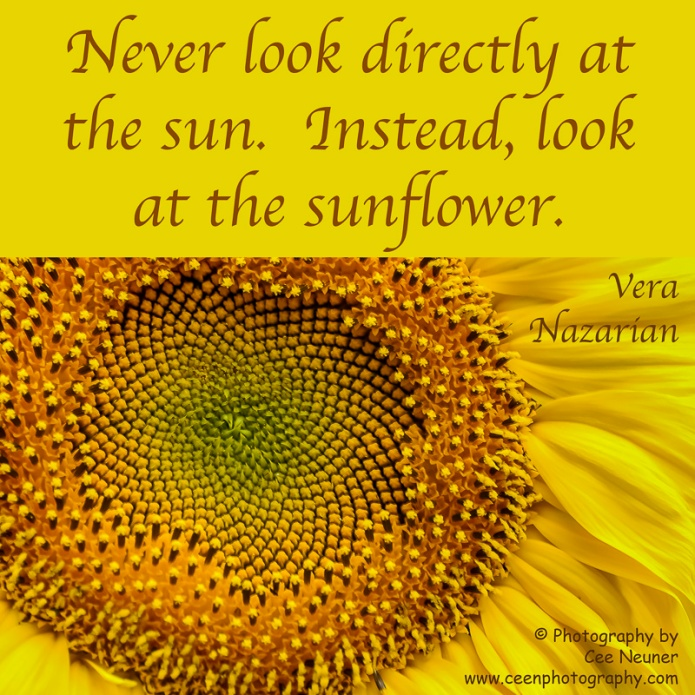 never look directly at the sun, instead, look at the sunflower, uplift, motivate, photography, Cee Neuner, ceenphotography.com, sunflower, macro, yellow