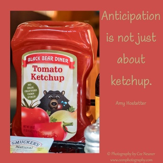 anticipation is not just about ketchup, uplift, motivate, photography, Cee Neuner, ceenphotography.com, red
