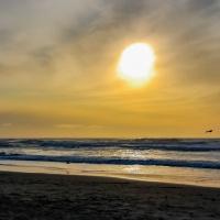 Lens-Artists Photo Challenge #109:  Under the sun