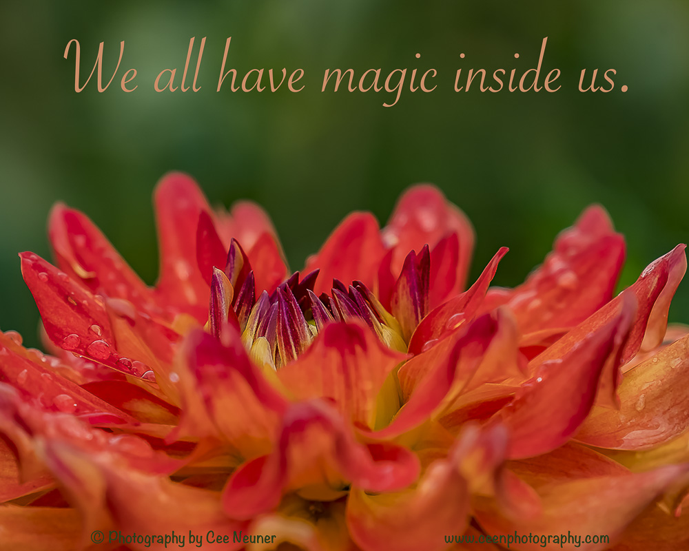 Pick Me Up and Six Word: We all have magic inside us