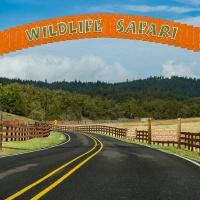 Which Way photo challenge – October 16, 2020 - Wildlife Safari
