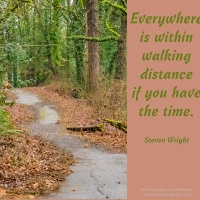 Pick Me Up and Weekly Quotation-Inspired Image - October 21