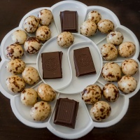October 29 - KindaSquare -  29 of kind chocolate lovers style