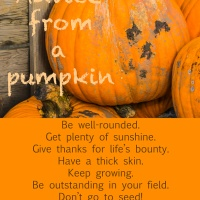 Advice from a pumpkin
