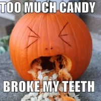 Cee's Friday Funny Finds - Week of October 23