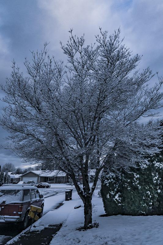 Sunday Stills Challenge – #Winter Wonderland