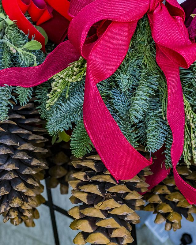 FOTD – December 25 – Happy Holidays